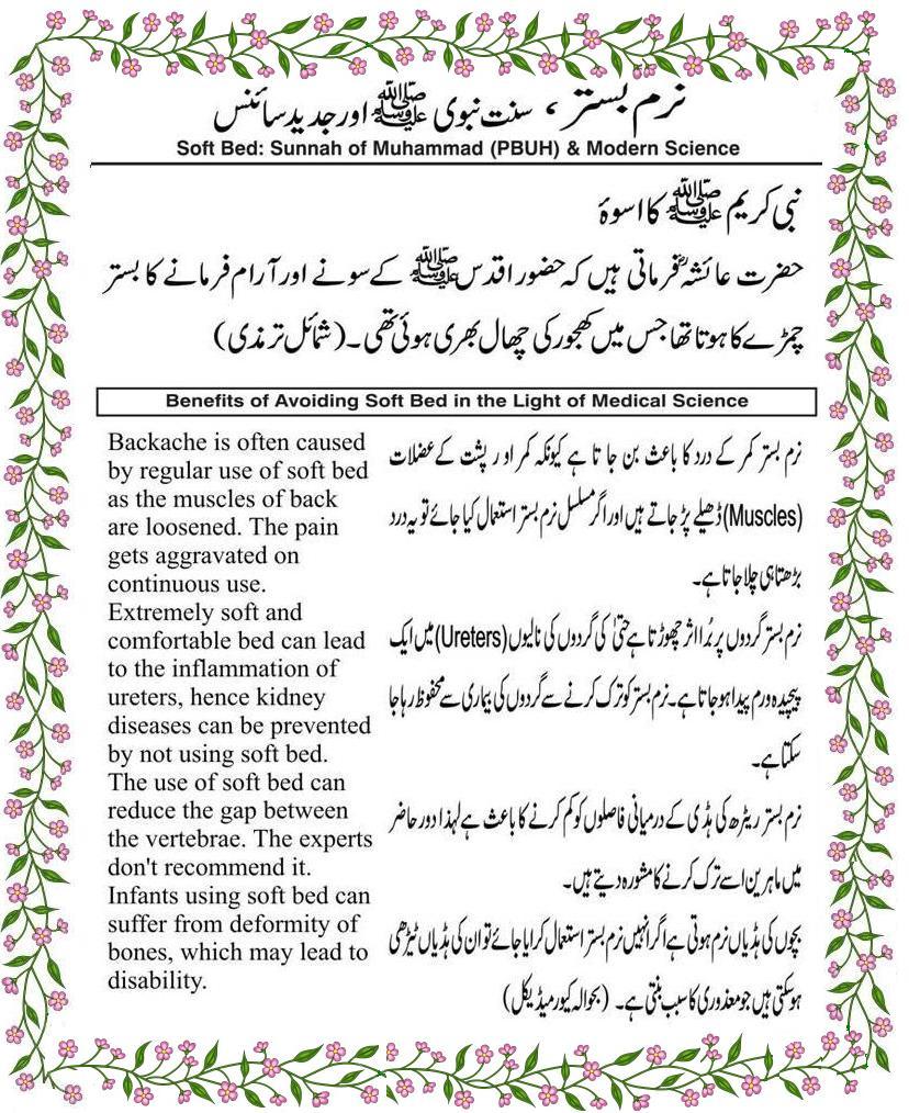 Freebooksmania-Urdu books pdf